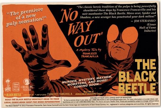 Black Beetle Flyer
